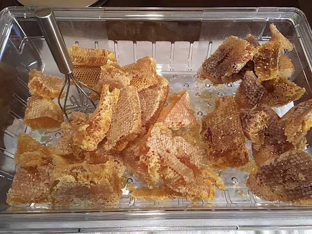 Local honey combs from bee removal jobs in Orlando, Fl
